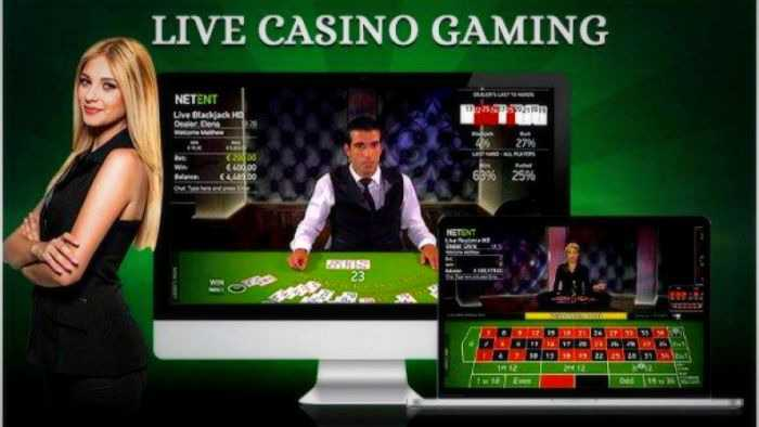 Casino live free: play popular games with a live dealer for free